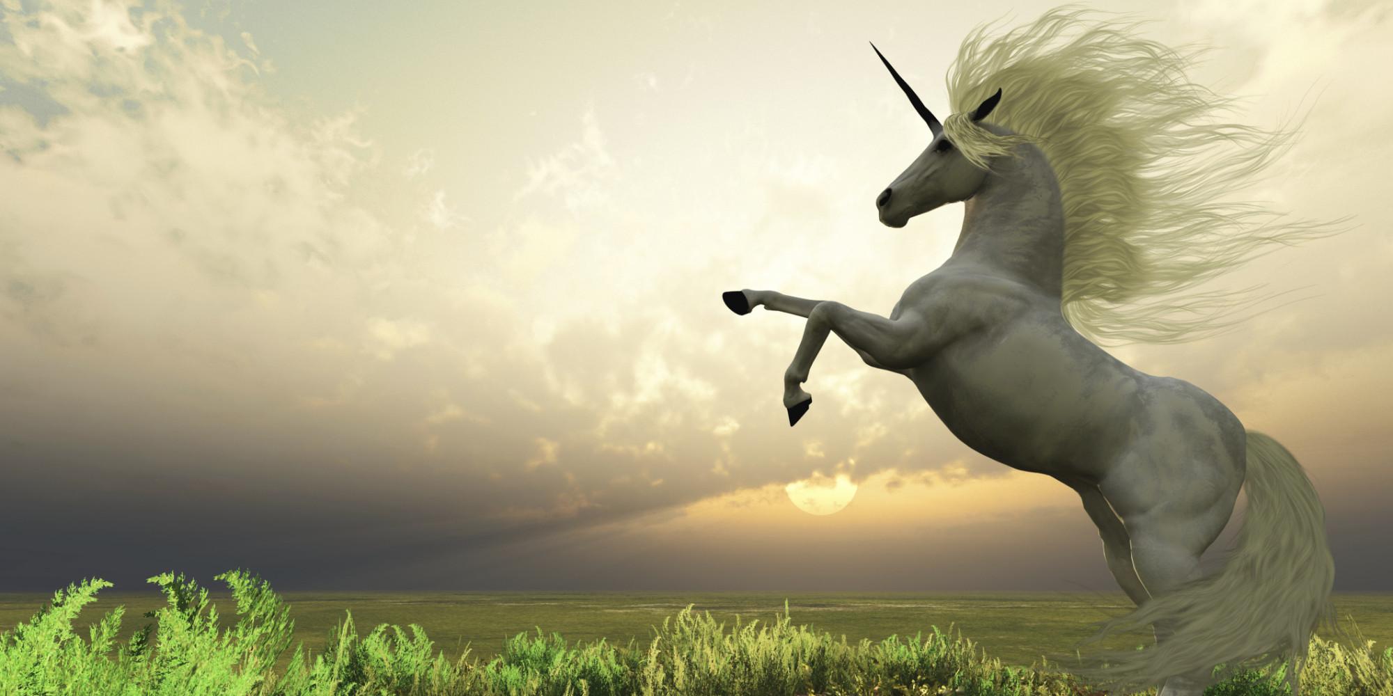o-unicorn-facebook